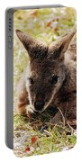 Resting Wallaby Portable Battery Charger
