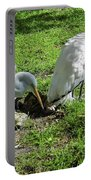 Resting Wood Stork And White Egret Portable Battery Charger