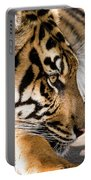 Resting Yet Watchful Tiger Portable Battery Charger