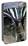 Resting Zebra Swallowtail Butterfly Portable Battery Charger