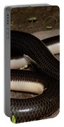 Reticulate Worm Snake Portable Battery Charger