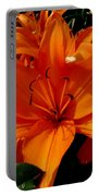 Retreating Orange Lilies Portable Battery Charger