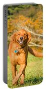 Retriever On The Run Portable Battery Charger