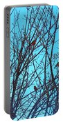 Returning Robins Portable Battery Charger