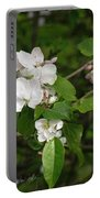 Rhineland-palatinate Pear Blossoms Portable Battery Charger