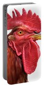 Rhode Island Red Rooster Isolated On White Portable Battery Charger