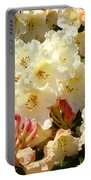 Rhodies Creamy Yellow Orange 3 Rhododendrums Gardens Art Baslee Troutman Portable Battery Charger