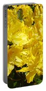 Rhodies Yellow Rhododendrons Art Prints Baslee Troutman Portable Battery Charger