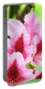 Rhododendron Floral Art Prints Rhodies Flowers Canvas Baslee Troutman Portable Battery Charger