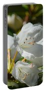 Rhododendron I Portable Battery Charger
