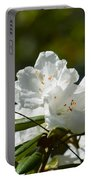 Rhododendron II Portable Battery Charger
