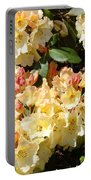 Rhododendrons Garden Art Prints Creamy Yellow Orange Rhodies Baslee Portable Battery Charger