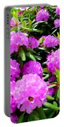 Rhododendrons In Bloom Portable Battery Charger