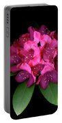 Rhody Queen - Red Portable Battery Charger