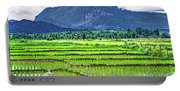Rice Paddies And Mountains Portable Battery Charger
