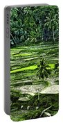 Rice Paddies Portable Battery Charger
