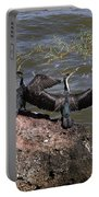 Rift Valley Cormorants Portable Battery Charger