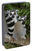 Ring-tailed Lemurs Portable Battery Charger