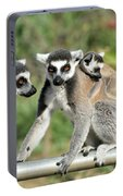 Ring Tailed Lemurs With Baby Portable Battery Charger