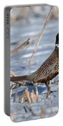 Ringneck Pheasant Rooster In Snow Portable Battery Charger