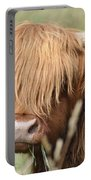 Ringo - Highland Cow Portable Battery Charger