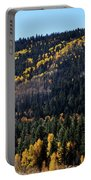 Rio Grande National Forest Portable Battery Charger