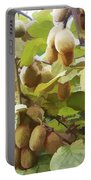 Ripe Kiwi Fruit On The Branch Portable Battery Charger