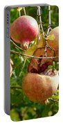 Ripe Pomegranates Portable Battery Charger