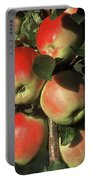 Ripening Apples Portable Battery Charger