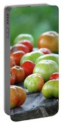 Ripening Portable Battery Charger