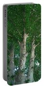 River Birches Portable Battery Charger