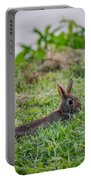 River Rabbit Portable Battery Charger