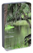 River Scenic Portable Battery Charger