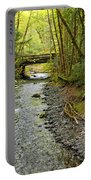 River Through The Rainforest Portable Battery Charger