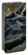 River Washed Rock Portable Battery Charger