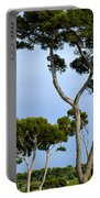 Riviera Trees Portable Battery Charger