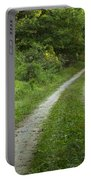 Road In Woods 1 D Portable Battery Charger