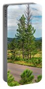 Road Through Custer State Park Portable Battery Charger