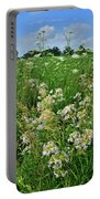 Roadside Bouquet Of Wildflowers In Mchenry County Portable Battery Charger