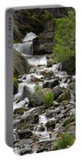 Roadside Mountain Stream Portable Battery Charger