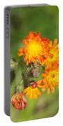 Roadside Wildflower Portable Battery Charger