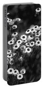 Roadside Wildflowers Portable Battery Charger