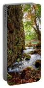 Roaring Spring Portable Battery Charger