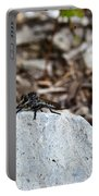 Robber Fly Sitting Portable Battery Charger