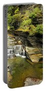 Robert H. Treman State Park Gorge Falls  Portable Battery Charger