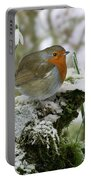 Robin And Snowdrops Portable Battery Charger