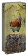 Robin Bird Portable Battery Charger
