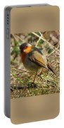 Robin In Hedgerow 3 Portable Battery Charger