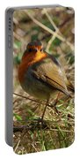 Robin In Hedgerow 2 Inch Donegal Portable Battery Charger