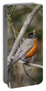 Robin In Tree Portable Battery Charger